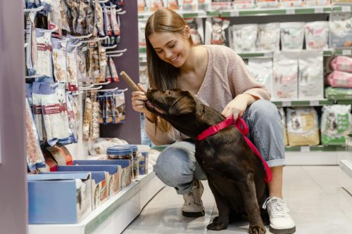 adorable-dog-with-owner-at-the-pet-shop